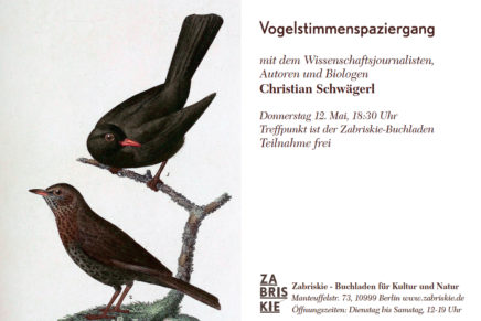 Ultra-urban birdwatching in Berlin